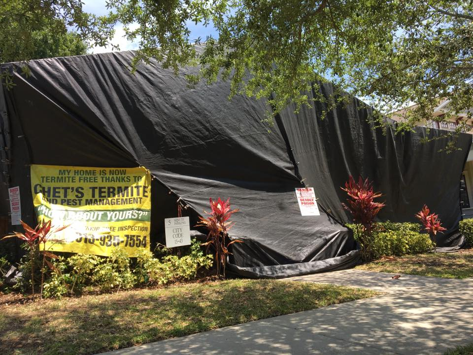 Tent Fumigation in Tampa Fl
