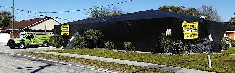 Tent Fumigation Service T&a & Tent Fumigation in Tampa FL | Pest Control u0026 Termite Tenting