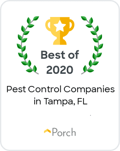 Thumbtack Professional Badge For Pest Control Services