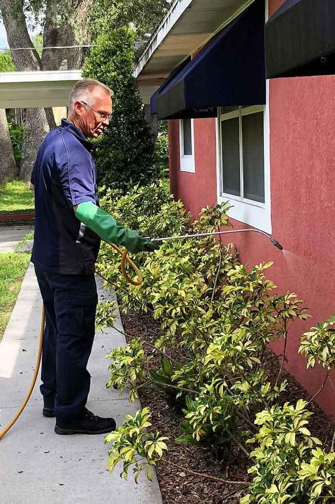 Pest Control Technician in Tampa, FL