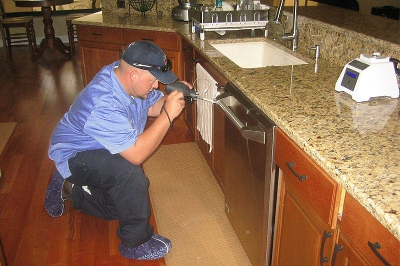 Pest Control Tampa Inspection