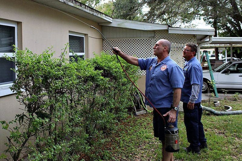 Pest Control Tampa blog photo of house