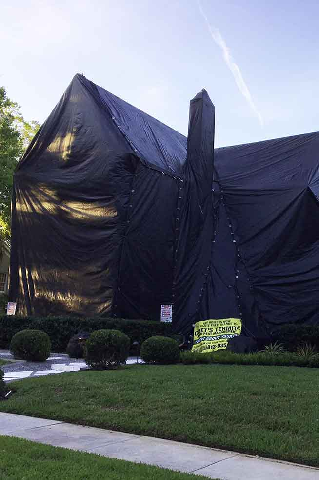 Tent fumigation of a home in Tampa, FL